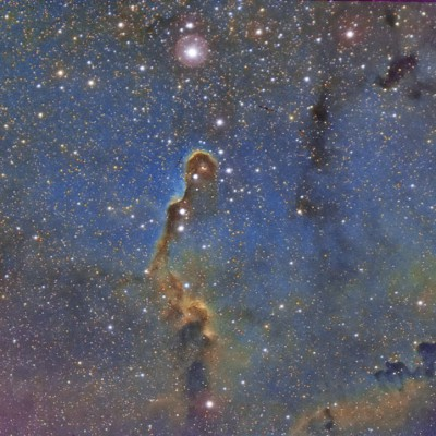 Trunk Nebula - F.Mortari