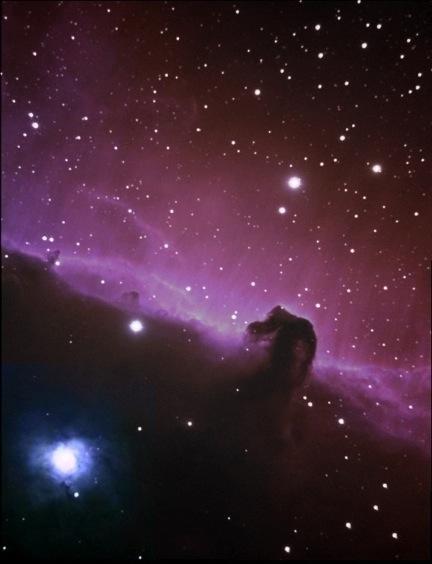 Horse Nebula - Dettaglio